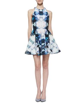 nm dress