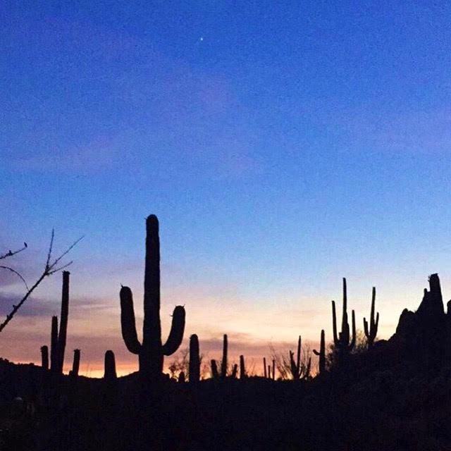 desert sunset,