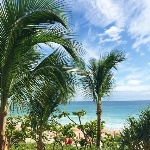 four seasons palm beach, room with a view, babymoon