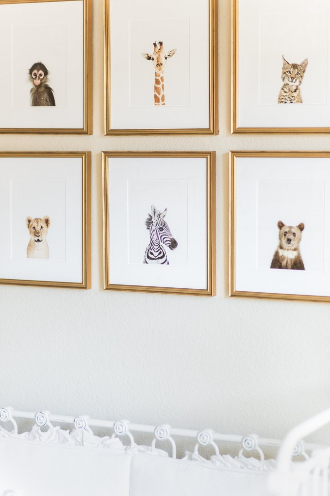 animal print shop, safari prints, baby animal prints, gender neutral nursery, nursery inspiration