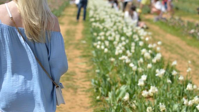 off the shoulder top, blue off the shoulder top, spring flowers