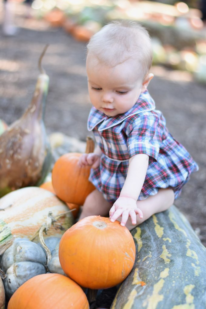baby boy with pumpkins at the pumpkin patch
