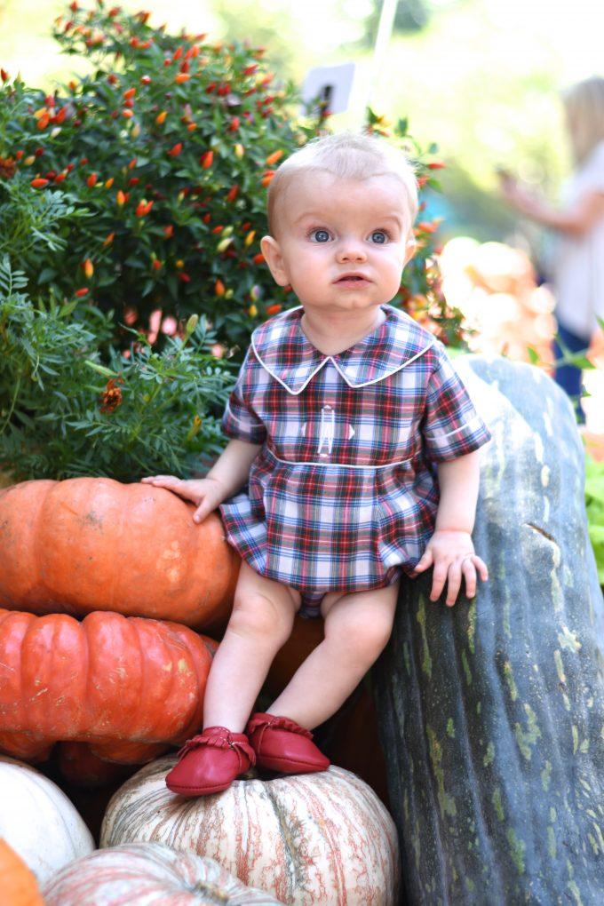 baby boy standing next to pumpkins
