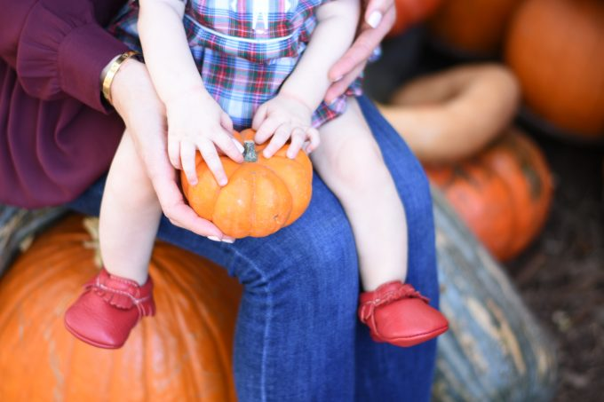 baby sitting on mother's lap touching a mini pumpkin