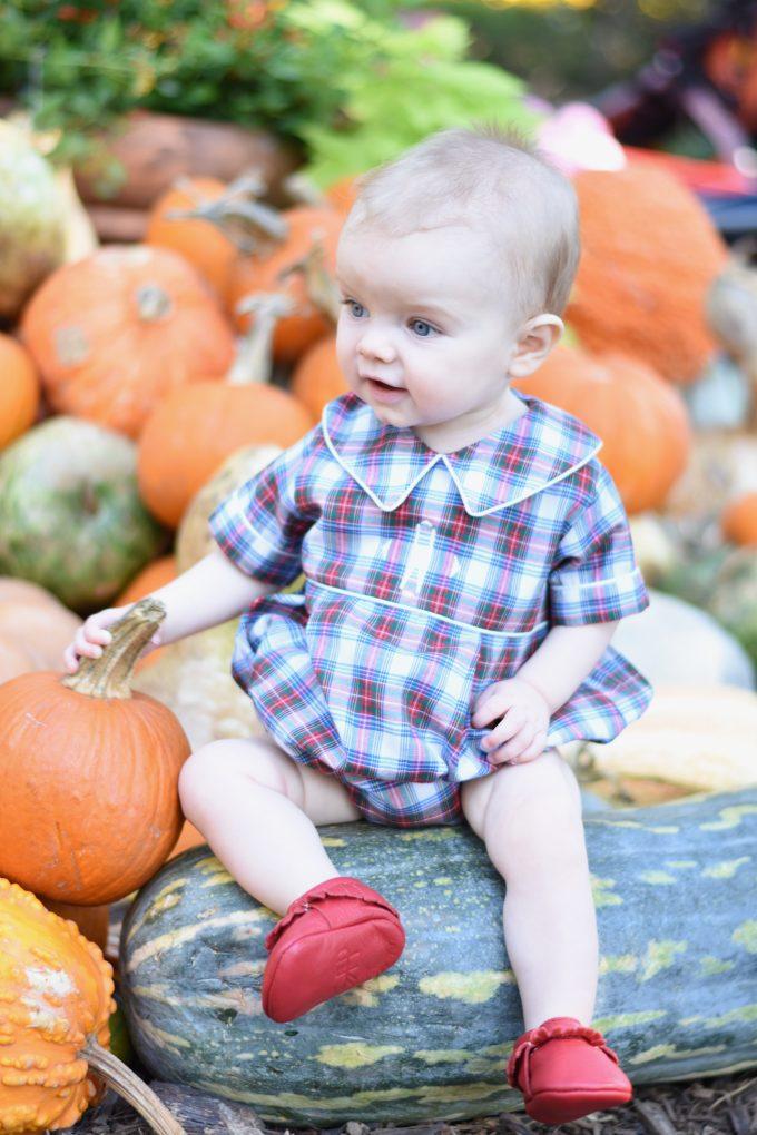 nine-month old baby boy in a pumpkin patch