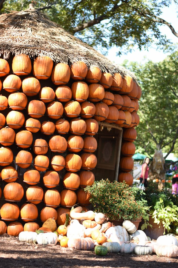 a small house made out of pumpkins