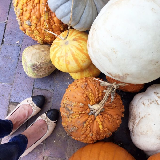a pair of Chanel flats next to an assortment of fall pumpkins