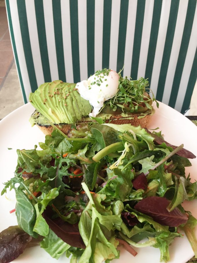 avocado toast at the Beverly Hills Hotel