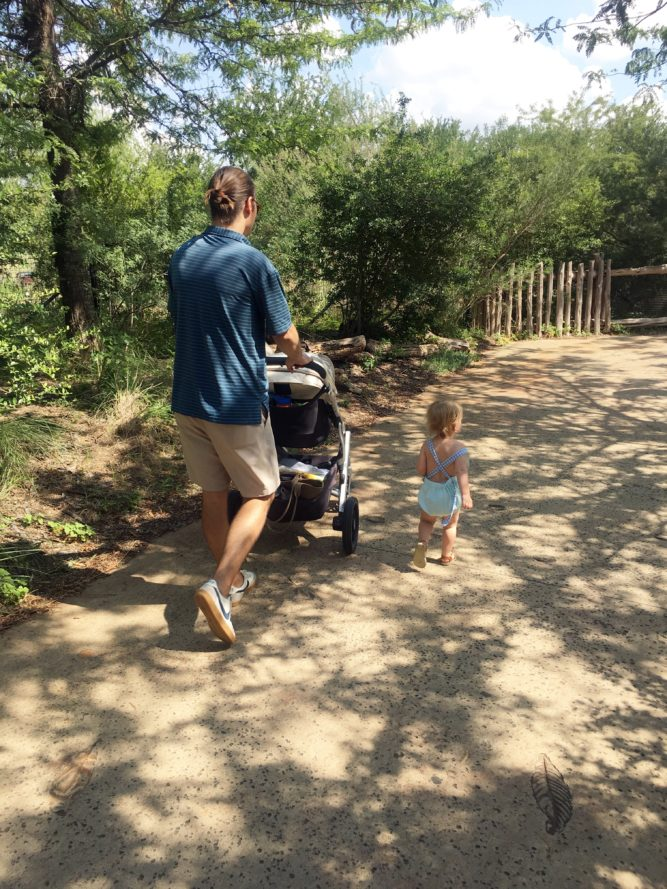 dad and baby walking through zoo