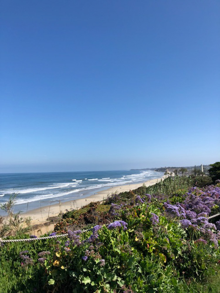 summer in del mar