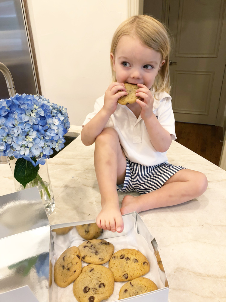 july in review toddler eating chocolate chip cookies