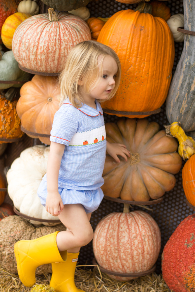 favorite fall activity in dallas pumpkin houses