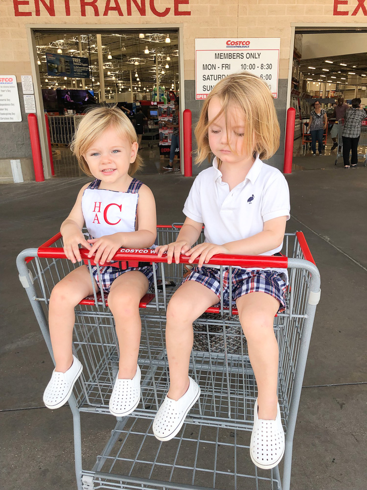 toddler boys in grocery cart