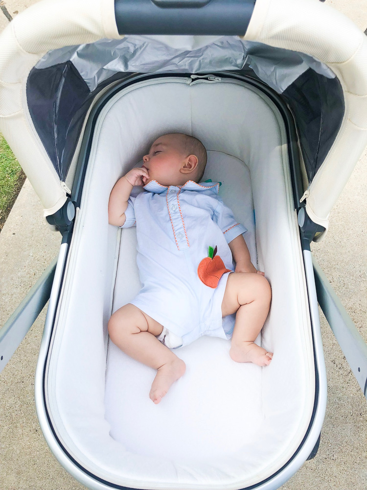 baby boy in bassinet stroller pumpkin bubble