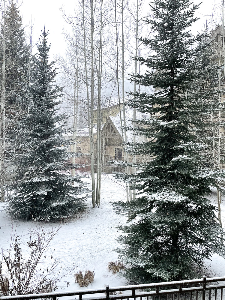 snowy view vail