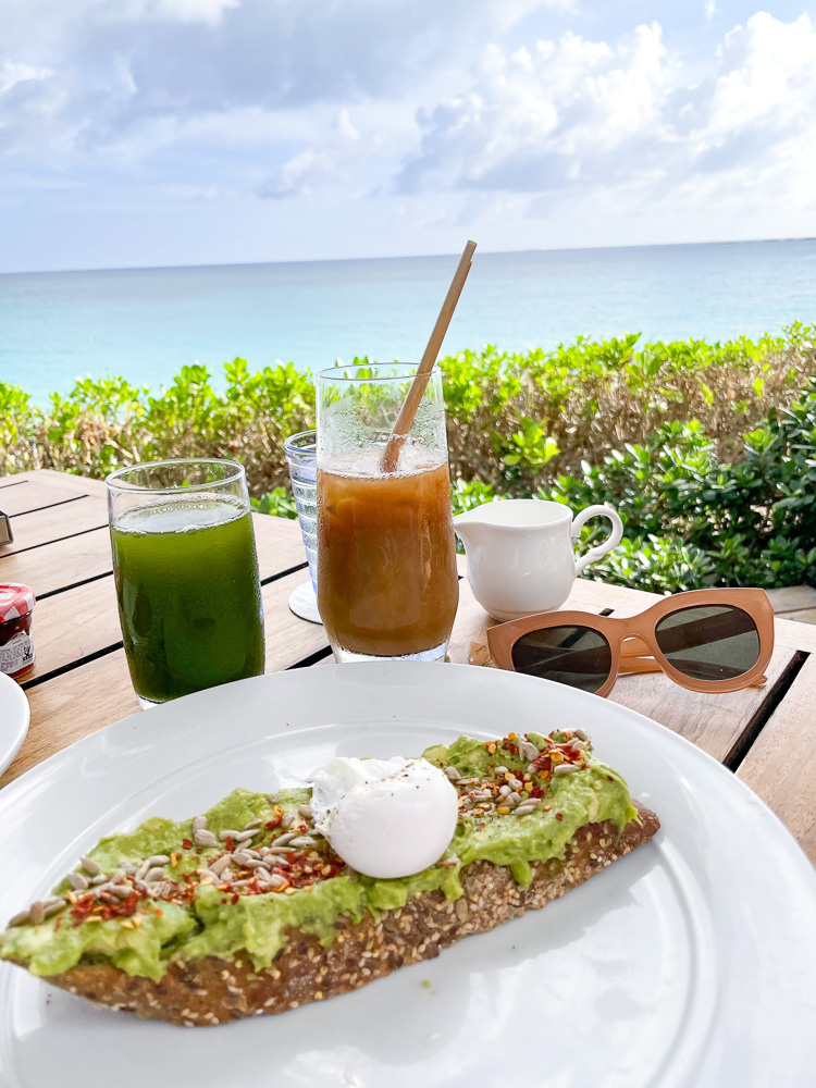 avocado toast and egg ocean view