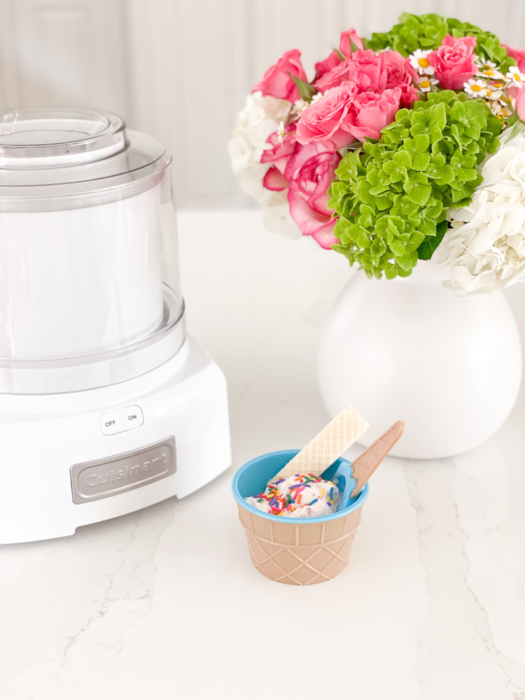 ice cream machine and bowl of ice cream