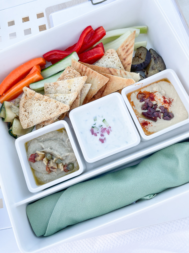 appetizer tray of hummus and pita and vegies