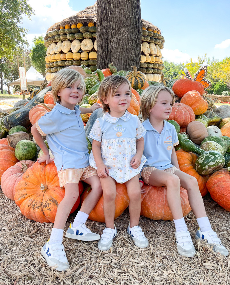 three young brothers sitting on pumpkins at the pumpkin patch